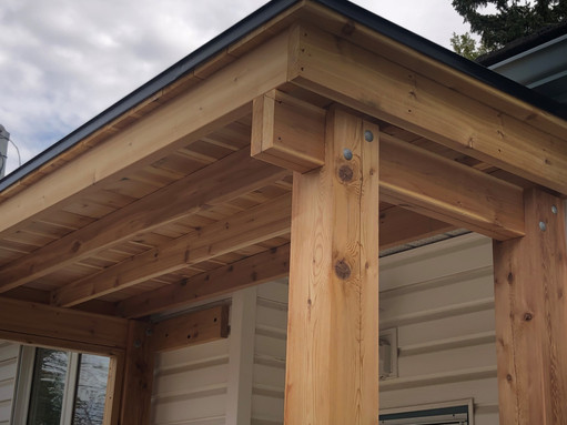 rear entry canopy.jpg