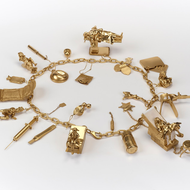 Charm Bracelet of My Reproductive Career