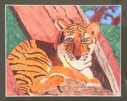 cropped+tiger+cub.jpg