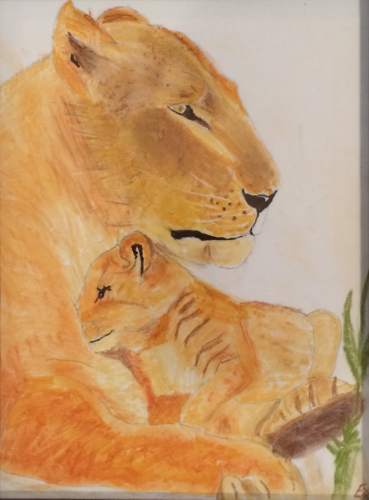 cropped+lion+and+cub.jpg