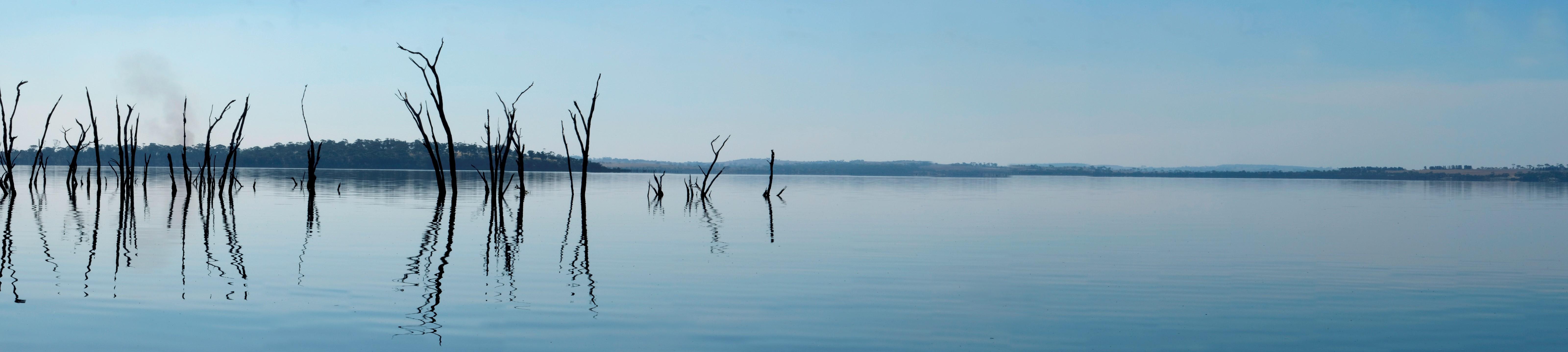 Lake Dumbleyung Panorama - by Christine Bairstow LG
