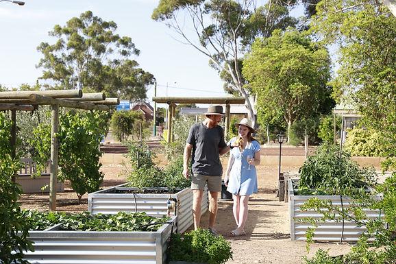 Dumbleyung Community Garden