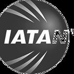 iatan-logo-300x300.png