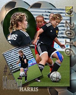 Soccer Multi template 2016.jpg