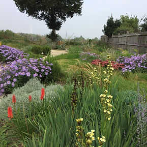 Gardeners Sevenoaks