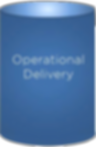 Insight No Operational Delivery