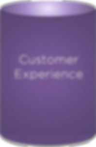 Insight Now Customer Experience