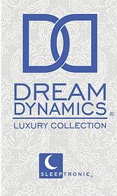 ST Logo - Dream Dynamics 2019 WB.png