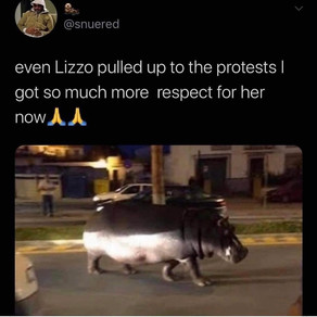 'Even Lizzo pulled up to the protests I got so much more respect for her now'