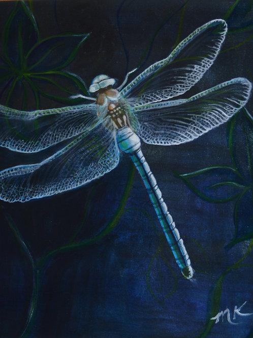 Nightlife: Blue Dragonfly