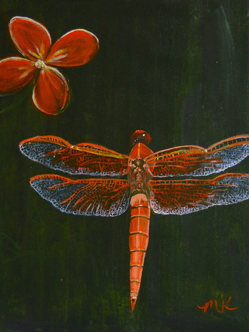 Nightlife:  Orange Dragonfly