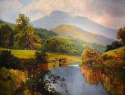 """Cattle in Autumn"""