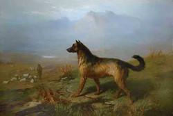 """""""Dog in a Highland Scene"""""""