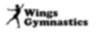 Wings gymnastics.PNG