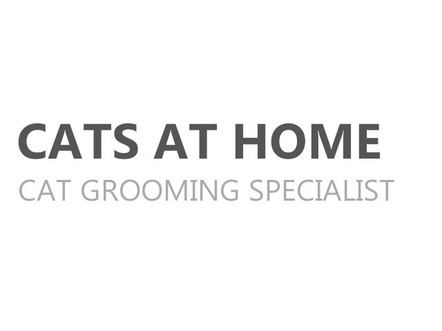 Cat Grooming Specialists