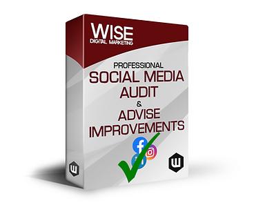 WISE Social Audit final.png