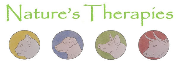 Nature's Therapies logo