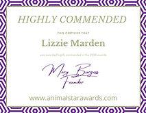 ASA highly commended winner certificate