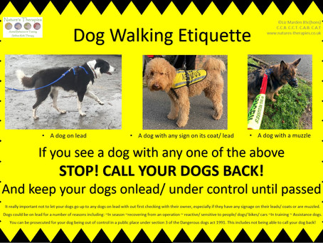 Dog walking etiquette - spreading awareness