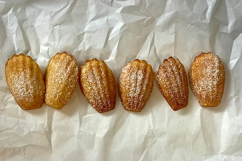 Madeleines 6-Count