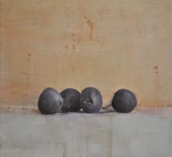 prune de gabriella benevolenza