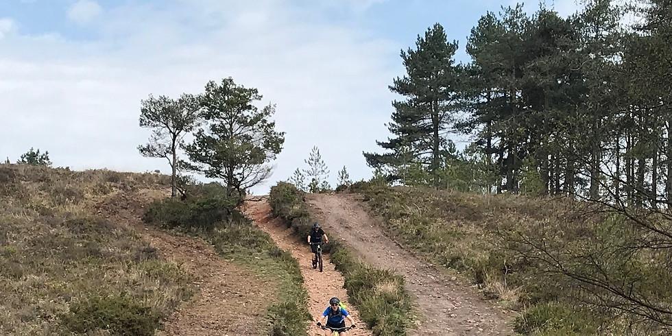 Guided mountain bike ride - Woodbury Common