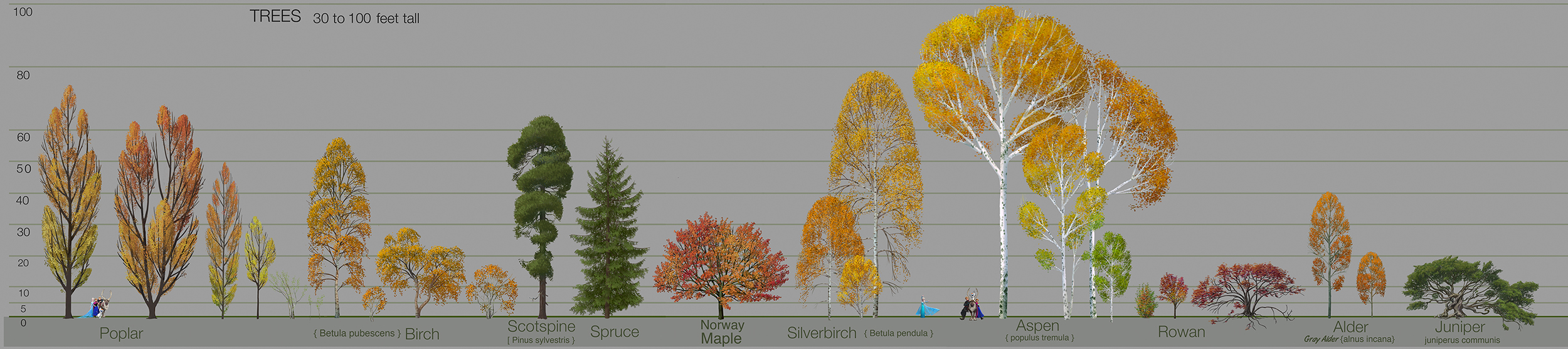 trees_scale3
