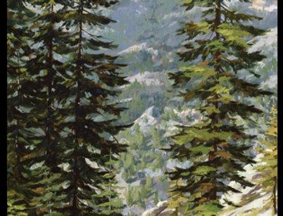 Sierra's landscape