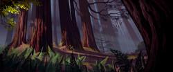 redwoodsfinalflat