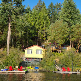Vintage Cabins from the lake
