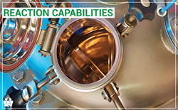 Reaction Capabilities-06