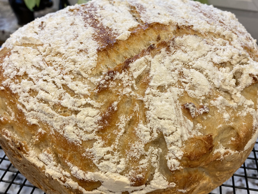 The Easiest No-Knead Crusty Bread