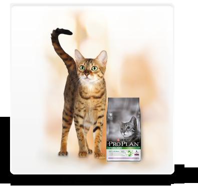 מזון חתולים - PURINA PROPLAN