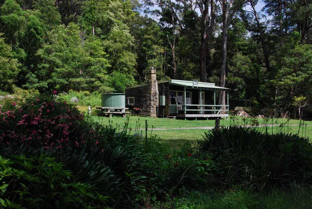 Cabin 1 from Garden