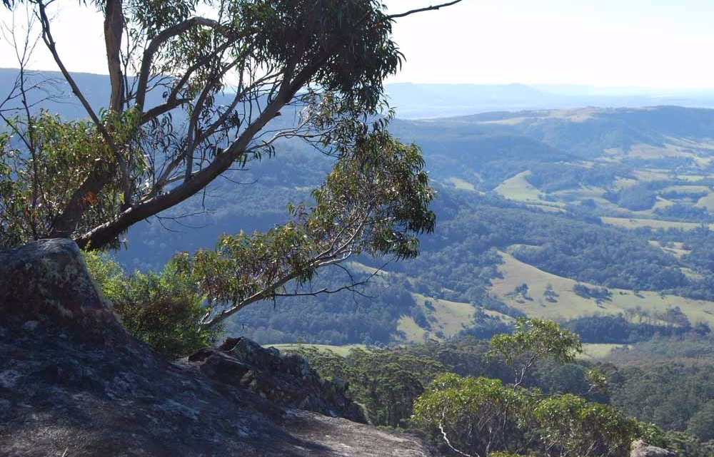 Jamberoo Valley from Barren Grounds