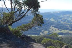 From Illawarra Lookout