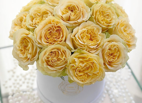 Premium White Box - Yellow Roses