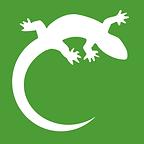 Logo Eidechse.png
