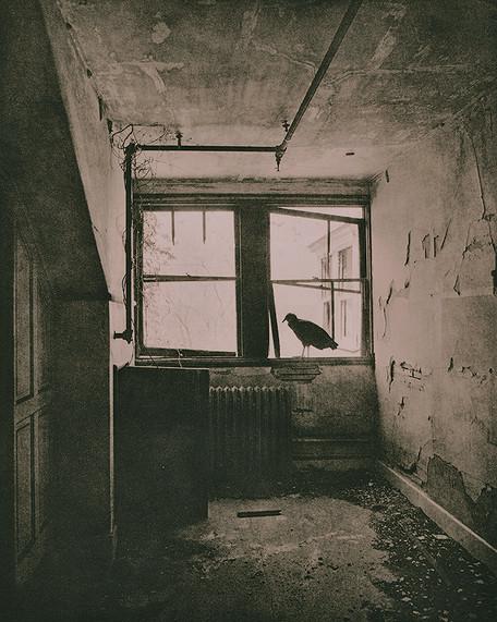 rusted (41).jpg