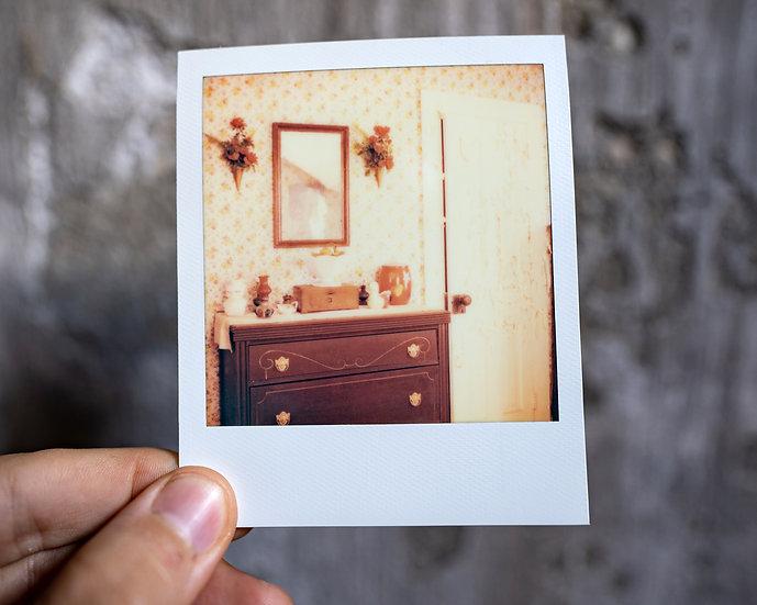 Dollhouse Polaroid II