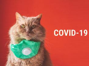 Osoby posiadające psy i koty a zakażenie koronawirusem SARS-CoV-2