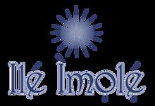 PNG Ile Imole Logo 2021-07_edited_edited