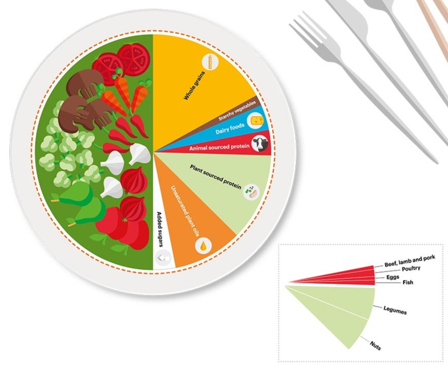 Half should be filled with fruits and vegetables (starchy vegetables, like potatoes, are limited), while the other half should consist of primarily whole grains and plant-based protein foods, with unsaturated oils and modest amounts of animal-based protein foods. (Source: EAT, Summary Report of the EAT-Lancet Commission)