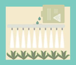 The Inside of Pesticides