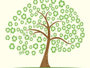 What is Sustainable Living?