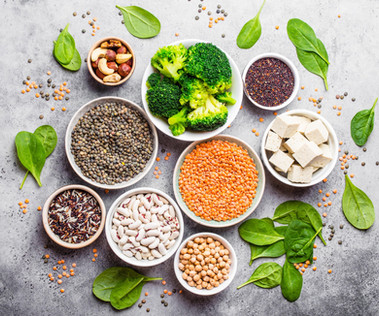 Plant Protein: A Friend of Human & Environmental Health