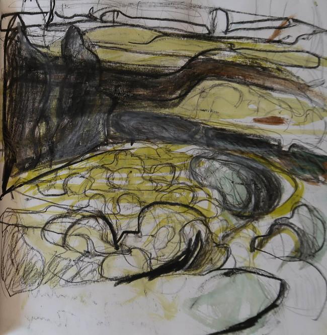 Siwan Gillick sketchbook 2019 c.jpg