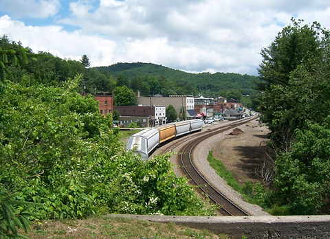 Spruce Pine.PNG