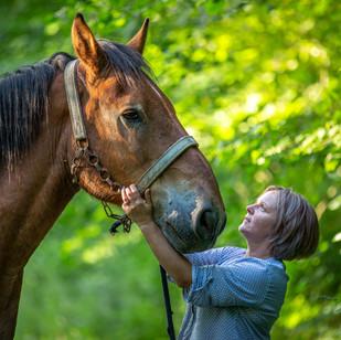 horseséancephoto.jpg