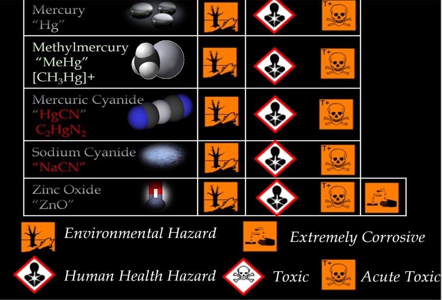 Hg Toxicity Data